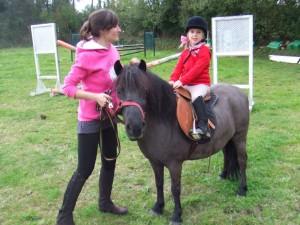 caballos (9)
